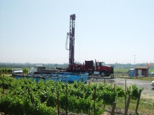 507655-riginvineyard